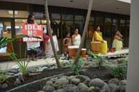 Mauna Kea Hearing Update