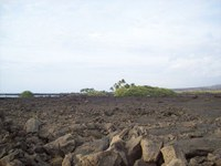Why designate Keauhou as a water management area?