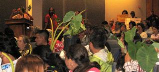 "Uncle Walter testifying in support of GMO-free taro to a ""lo'i"" audience"